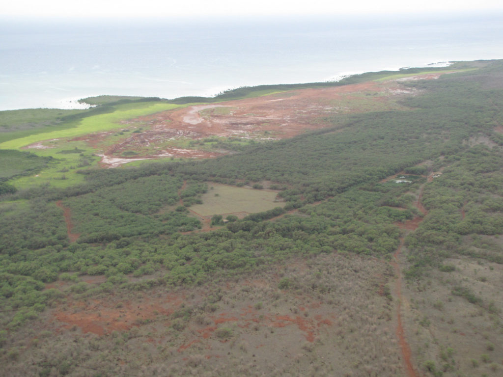 Palaʻau State Park