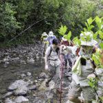 Wahiawa Freshwater State Recreation Area