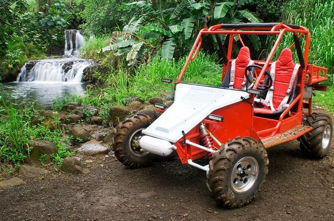 Off-Road Tour of Kauai Waterfalls on Kauai