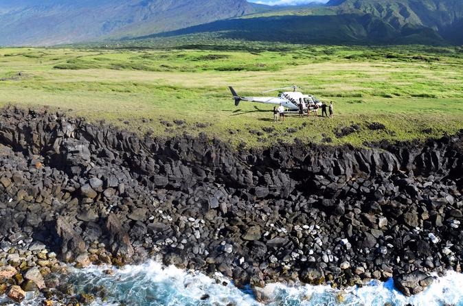 Viator Exclusive: Maui Helicopter Tour with Private Cliffside Landing on Maui